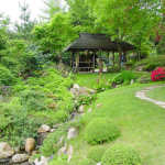 Биотоп - сад в природном стиле.