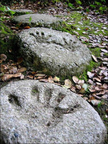 декор камней для дорожек