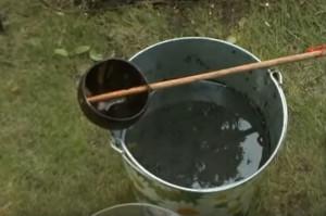раствор для подкормки огурцов