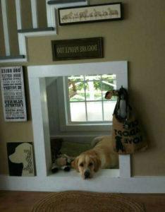 будка для собаки в помещении 7