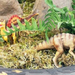 сад динозавров из покрышки