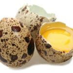яйца перепелов фото