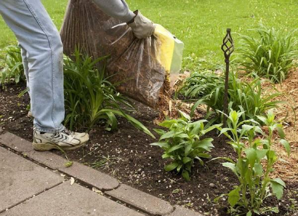 опилки для огорода использование